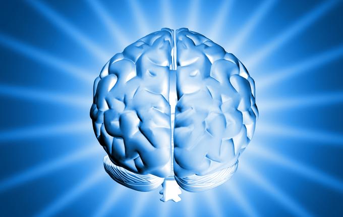 brain_gathering